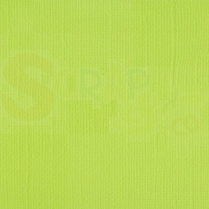 "Vaessen Creative, Florence cardstock 2928-068 texture 12x12"" - lime"