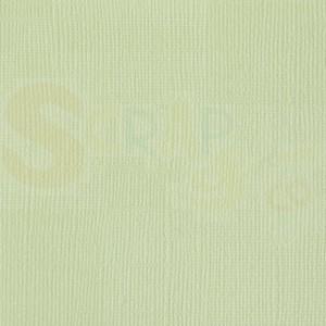 Cardstock groen, aloe vera, Bazzill canvas structure