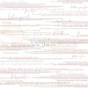 Alexandra Renke, designpapier 10.1185, Flower names dark pink