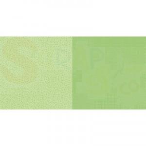 Dini Design Scrappapier, stippen bloemen lime groen #2003