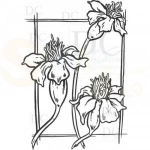 S-00592 Marigold Flower