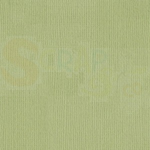 Cardstock Bazzill canvas structure, Pear