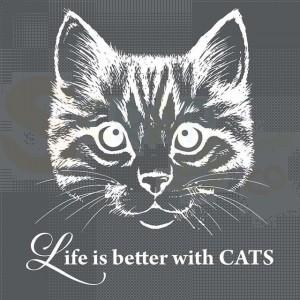 Stamperia stencil 18x18 cm KSTDQ24, Cat