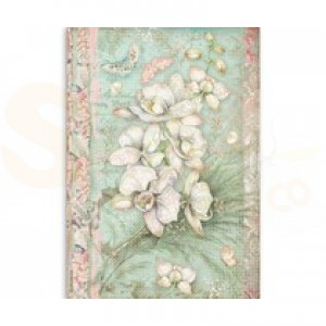 Stamperia rice paper A4, White Orchid DFSA4508