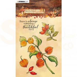 Studiolight, Stamp Wonderful Autumn, nr. 481 STAMPWA481